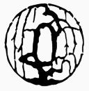 Aikido club Riushinkan