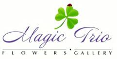 Flowers salon Magic Trio