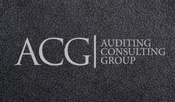 Audit firm Consulting group