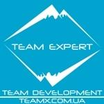 Company Team Expert
