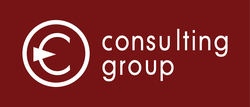 Company Consulting Group